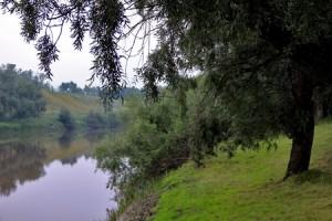 Курган – Кемерово. Общий путь - 4869 километров.